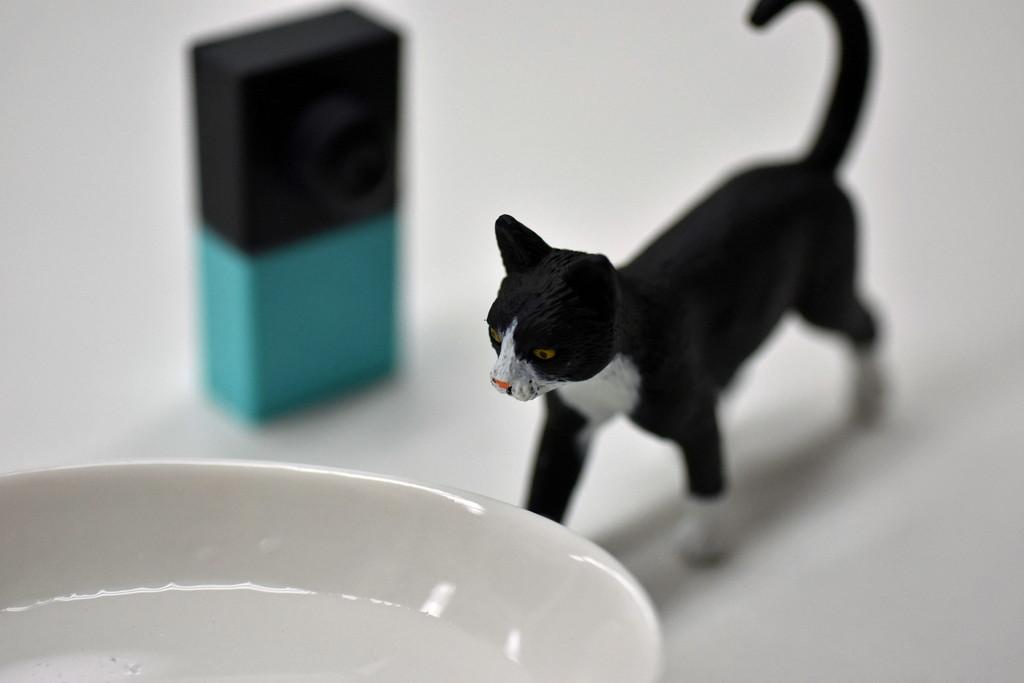 水をちゃんと飲んでるかニャ~ 不在時に猫の安否を簡易モニタリング