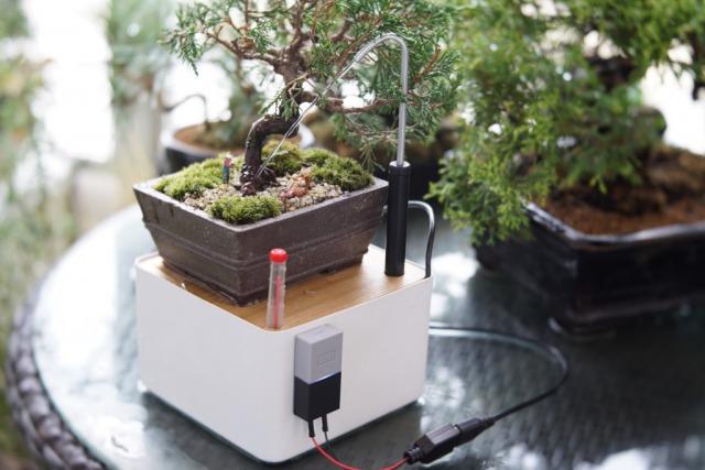 植物と語りあえる水やり機